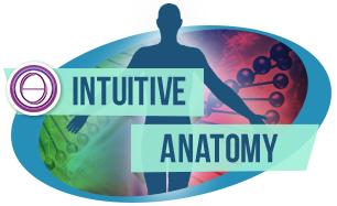 ThetaHealing® Intuitive Anatomie Seminar