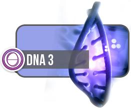 ThetaHealing® DNA3 Seminar