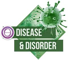 ThetaHealing® Krankheiten und Beschwerden Seminar